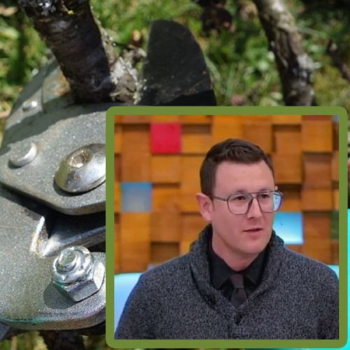 Pruned for a Purpose with Assistant Pastor Kyle Kelley